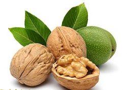 Грецкий орех — польза и применение в лечебных целях.