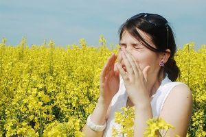 Лечение аллергии травами — 5 эффективных сборов против аллергии